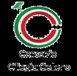 presentazione_consorzio
